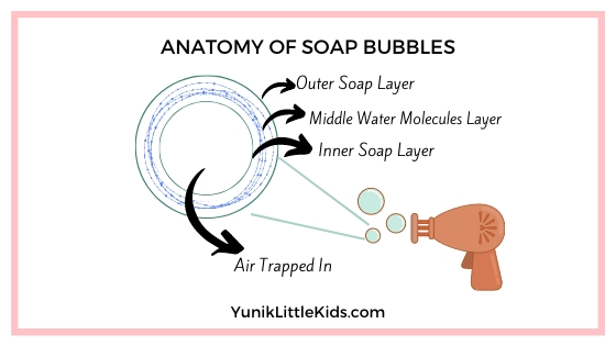Anatomy of soap bubbles