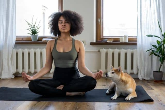 Lady meditating with a dog